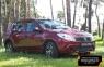 Защитная сетка переднего бампера (с ДХО) Renault Sandero 2009-2013
