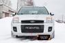 Защитная сетка и заглушка переднего бампера Ford Fusion 2005-2012