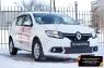 Защитная сетка и заглушка переднего бампера Renault Sandero 2014-2017 (II дорестайлинг)