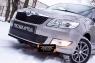 Защитная сетка и заглушка переднего бампера Skoda Fabia II 2010-2013